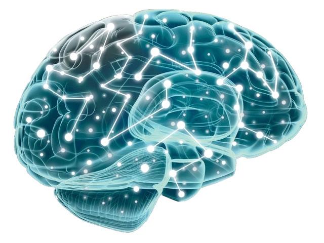 Gehirn Visualisierung